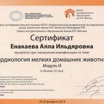 Сертификат Енакаевой Аллы Ильдяровны. Врача ветеринарной клиники «Дженк» находящейся в городе Москва, ул. 6-я Радиальная, д 5, к. 1