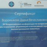 Сертификат Вороньжевой Дарьи Вячеславовны. Врача ветеринарной клиники «Дженк» находящейся в городе Москва, ул. Бирюлевская дом 49 корпус 4 строение 2