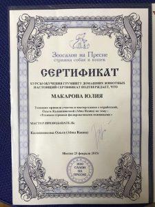 """Сертификат грумера Юлии Макаровой работающей в зоосалоне """"Василиса"""", находящийся по адресу улица Бирюлевская, д. 49, к 4, ст. 2"""