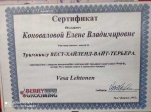 """Сертификат грумера Елены Коноваловой работающей в зоосалоне """"Василиса"""", находящийся по адресу улица Бирюлевская, д. 49, к 4, ст. 2"""